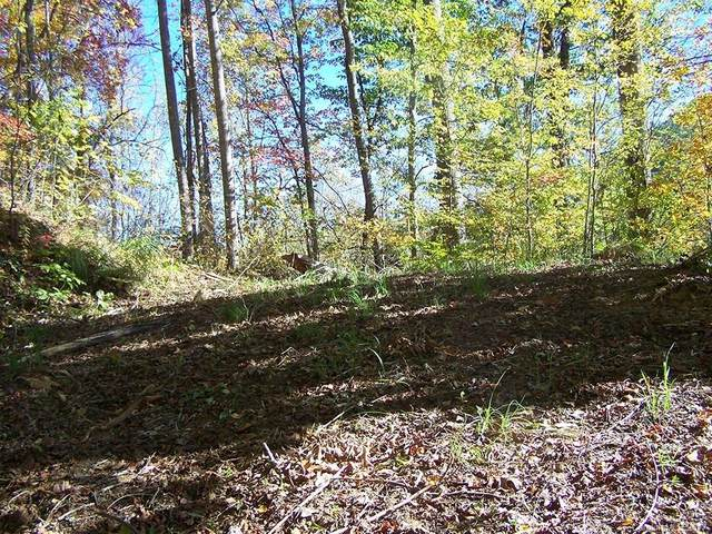 Lot 71 Running Deer Lane #71, Mars Hill, NC 28754 (#3215533) :: Robert Greene Real Estate, Inc.