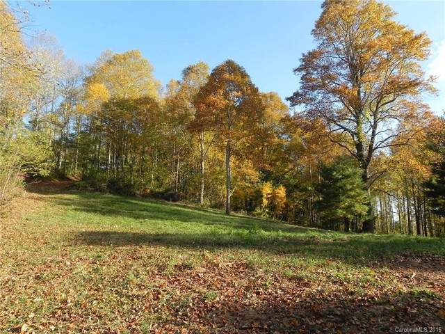 9999 Elk Mountain Scenic Highway, Asheville, NC 28804 (#3224703) :: Love Real Estate NC/SC
