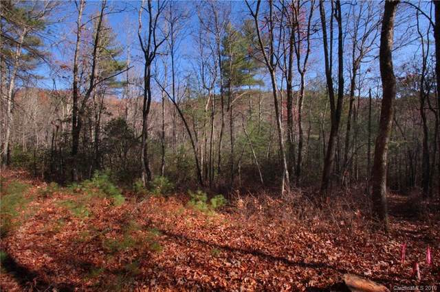 3B Dragon Tail Trail 3B, Brevard, NC 28712 (#3233667) :: Burton Real Estate Group
