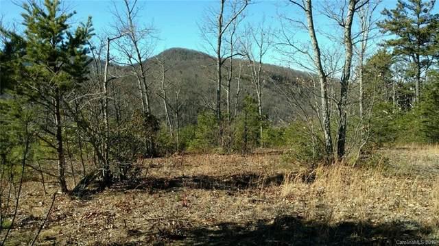170 N Lure View Lane #58, Hendersonville, NC 28792 (#3236539) :: Modern Mountain Real Estate