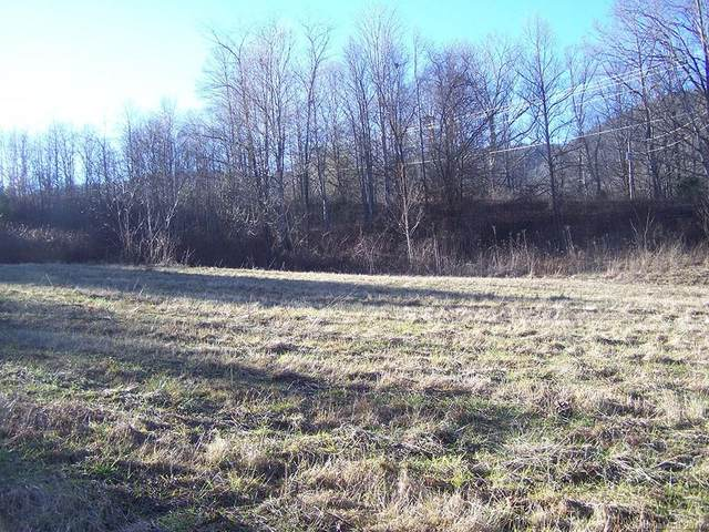 Lot 23 Tizwood Drive #23, Waynesville, NC 28785 (#3246168) :: Modern Mountain Real Estate