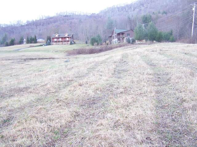 Lot 7 Camden Downs Lane #7, Waynesville, NC 28785 (#3246291) :: Modern Mountain Real Estate