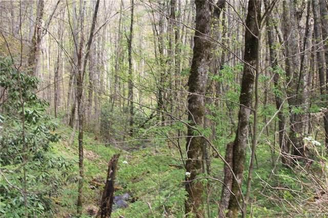 0000 Big Spring Trail #61, Qualla, NC 28719 (#3253867) :: BluAxis Realty