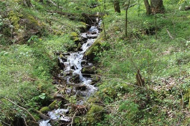 0000 Big Spring Trail 61,69, Qualla, NC 28719 (#3253869) :: Lake Wylie Realty