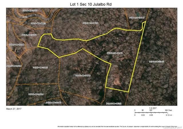 Lot 1 Sec 10 Julalbo Road Lot 1, Whittier, NC 28789 (#3264995) :: Scarlett Property Group