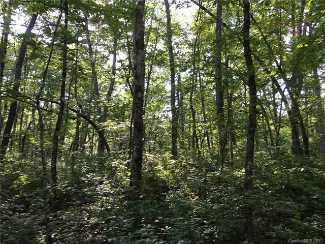 lot 16 Robin Hood Road, Brevard, NC 28712 (#3290046) :: Keller Williams Professionals