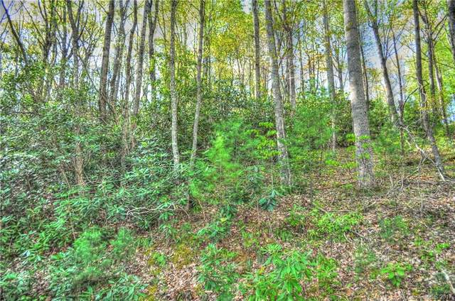 111 Deer Run #40, Asheville, NC 28805 (#3301377) :: Mossy Oak Properties Land and Luxury