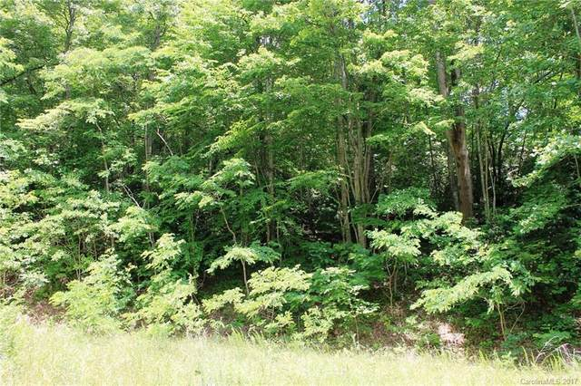 LOT #32 Rambling Trail #32, Hendersonville, NC 28739 (#3304495) :: Ann Rudd Group