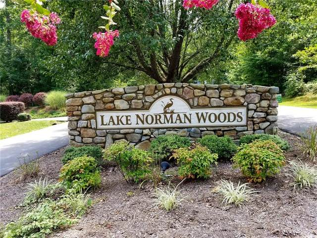 1046 Arabian Court #48, Catawba, NC 28609 (#3309320) :: DK Professionals Realty Lake Lure Inc.