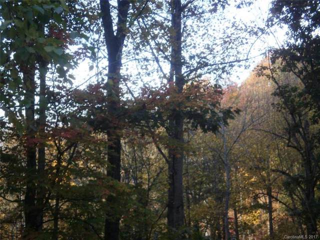 Lot 18, 19 Magnolia Way Lot 18, 19, Waynesville, NC 28786 (#3312240) :: Rinehart Realty