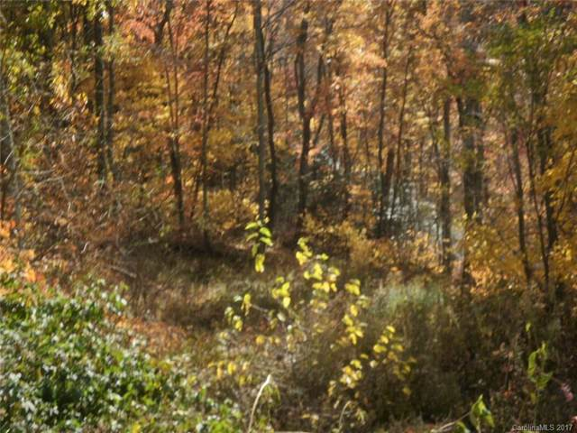 Lot 31 Timucua Trail Lot 31, Waynesville, NC 28786 (#3312251) :: Premier Realty NC