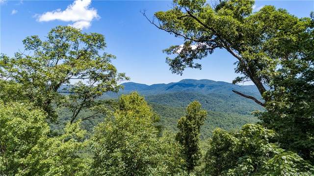9999 Lower Flat Creek Road #01, Black Mountain, NC 28711 (#3315243) :: The Premier Team at RE/MAX Executive Realty