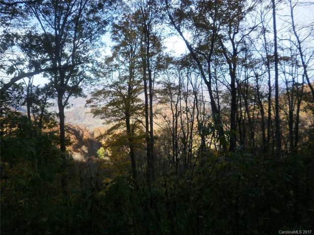 Lot 623 Anikawi Trail Lot 623, Maggie Valley, NC 28751 (#3322492) :: Love Real Estate NC/SC