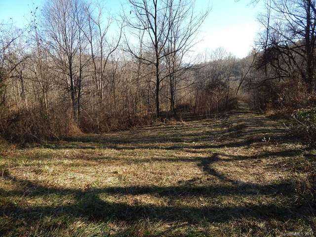 Lot 11 Coyote Hollow Road, Waynesville, NC 28785 (#3344059) :: The Mitchell Team