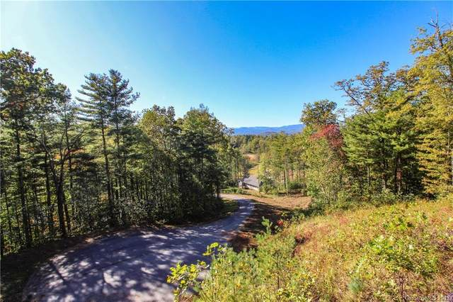 237 Crystal Mountain Drive #10, Hendersonville, NC 28739 (#3359011) :: Robert Greene Real Estate, Inc.