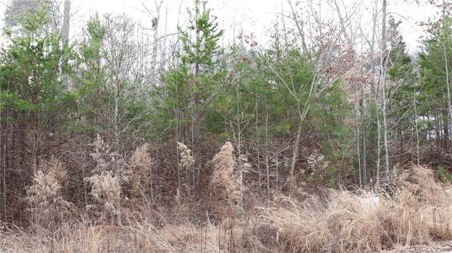 162 Fairhaven Lane Lot 22, Cleveland, NC 27013 (#3363463) :: DK Professionals Realty Lake Lure Inc.