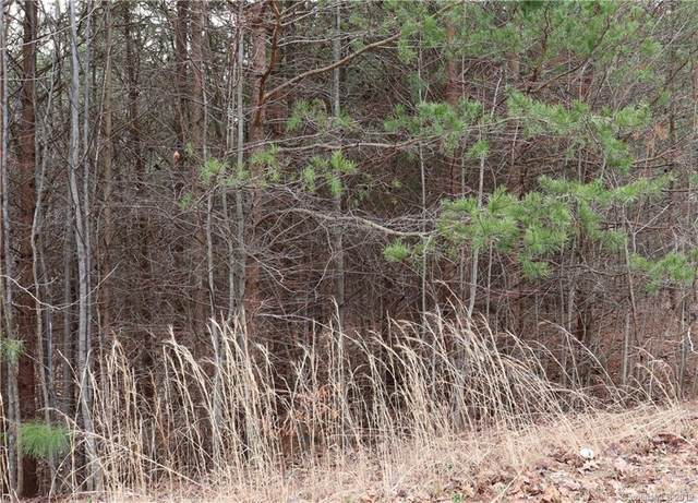 186 Fairhaven Lane Lot 17, Cleveland, NC 27013 (#3363470) :: DK Professionals Realty Lake Lure Inc.