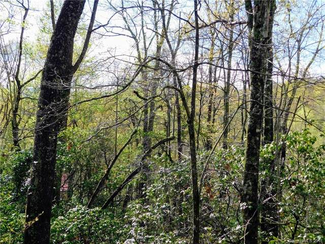 L25R Pisgah Forest Drive #25, Pisgah Forest, NC 28768 (#3383933) :: Mossy Oak Properties Land and Luxury