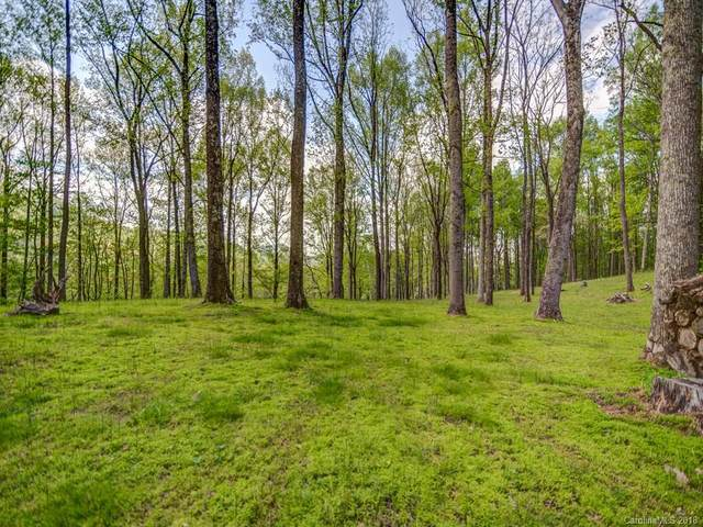 Lot 7 Powder Springs Trail, Arden, NC 28704 (#3385688) :: Robert Greene Real Estate, Inc.