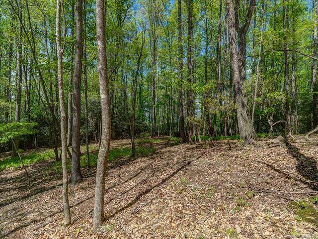 Lot 2 Powder Springs Trail, Arden, NC 28704 (#3385713) :: Robert Greene Real Estate, Inc.