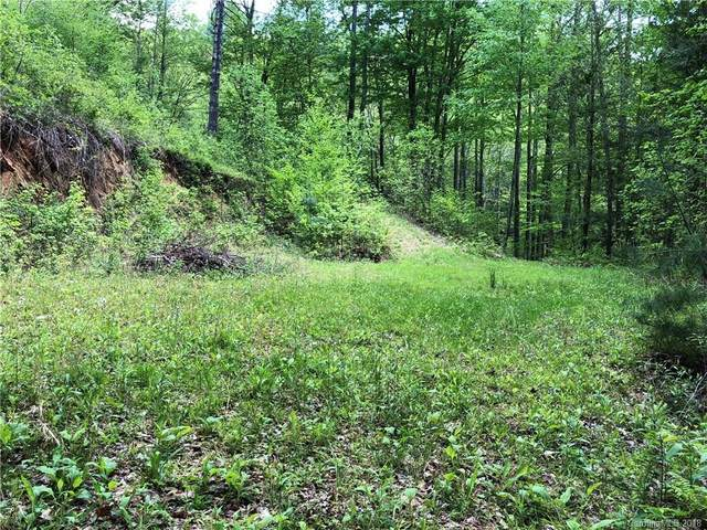 6 E Gallant Moose Trail E #6, Waynesville, NC 28785 (#3390188) :: Mossy Oak Properties Land and Luxury