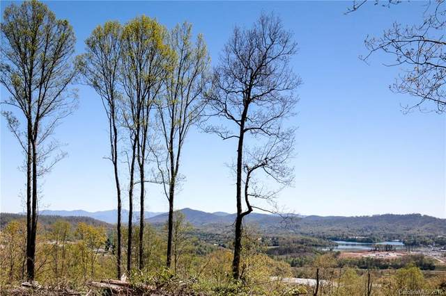 118 Waightstill Drive #332, Arden, NC 28704 (#3395202) :: Carolina Real Estate Experts