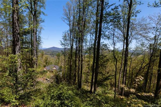 111 Waightstill Drive #340, Arden, NC 28704 (#3395245) :: Carolina Real Estate Experts