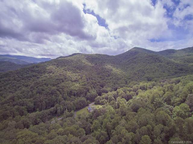 000 Wildwood Acres Road 67-68, Burnsville, NC 28714 (#3396307) :: TeamHeidi®