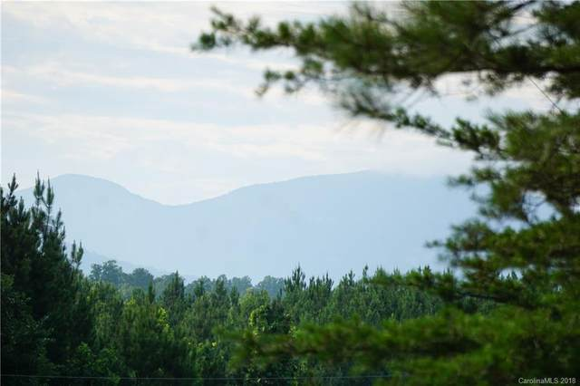 Lot # 3 Contuck Lane #3, Mill Spring, NC 28756 (#3407329) :: Premier Realty NC