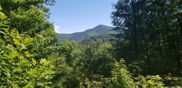 Lot 8 & 9 Roselyn Park Drive, Waynesville, NC 28785 (#3410246) :: IDEAL Realty
