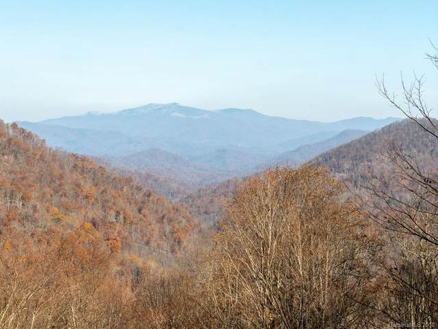 Lot 17 Mountain Gait Drive, Mars Hill, NC 28754 (#3414876) :: The Premier Team at RE/MAX Executive Realty