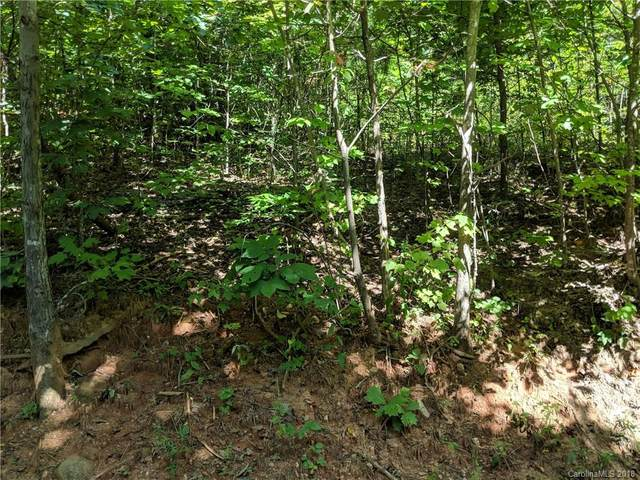 Lot 24 Bald Eagle Drive, Hendersonville, NC 28792 (#3426954) :: Johnson Property Group - Keller Williams