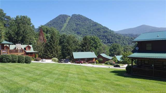 61 Panoramic Loop, Maggie Valley, NC 28751 (#3428194) :: TeamHeidi®