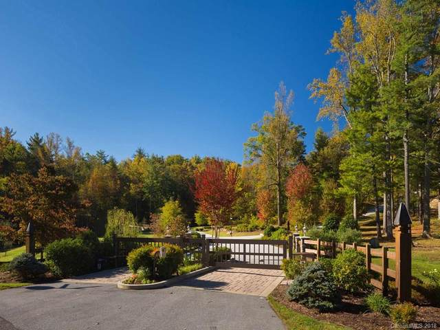 169 Long Tail Lane #35, Hendersonville, NC 28739 (#3430259) :: IDEAL Realty