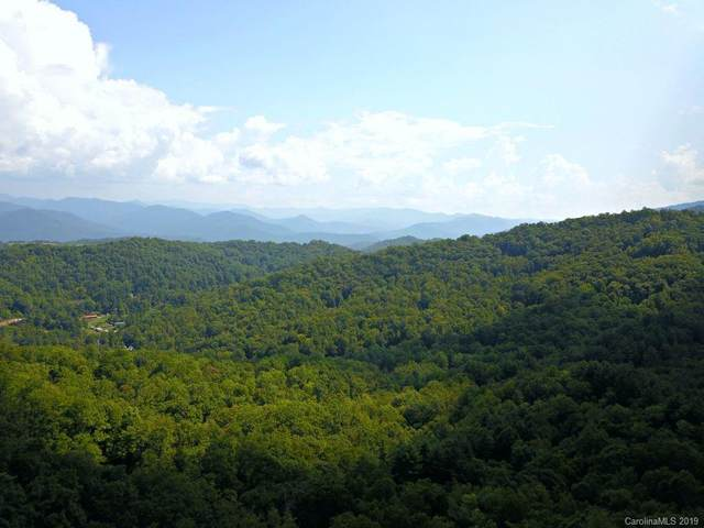 0 Mountain Forest Estate #0, Sylva, NC 28779 (#3433042) :: High Performance Real Estate Advisors