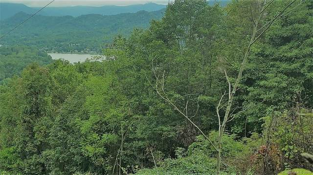 Lot 1 Liner Road #1, Waynesville, NC 28786 (#3435000) :: Keller Williams South Park