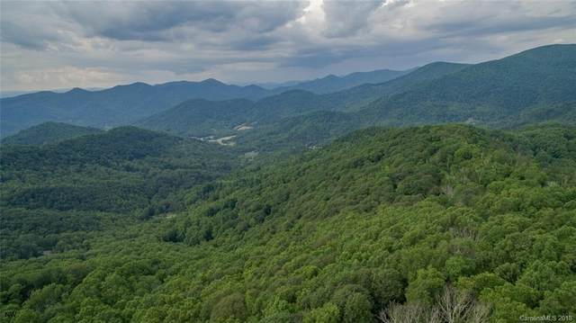 1300 Elk Mountain Scenic Highway, Asheville, NC 28804 (#3446202) :: Love Real Estate NC/SC