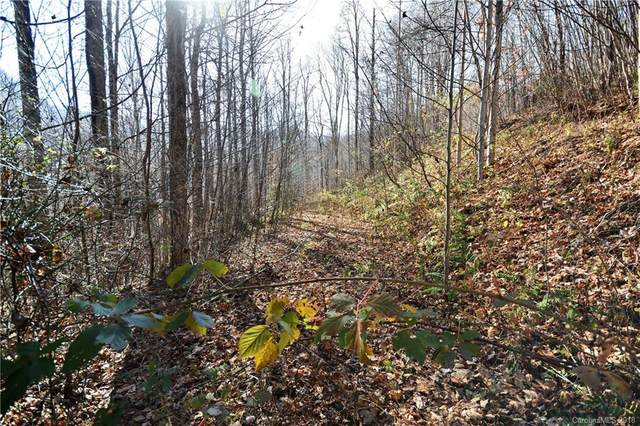 #11 Lot Davy Crockett Drive #11, Maggie Valley, NC 28751 (#3451146) :: Exit Realty Vistas