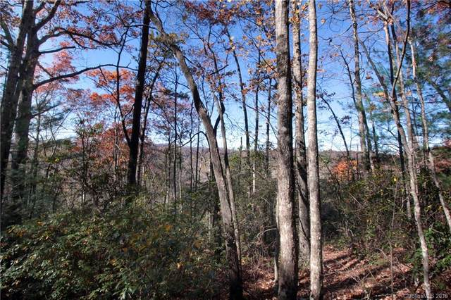Lot 37 West View Road #37, Brevard, NC 28712 (#3454007) :: Willow Oak, REALTORS®