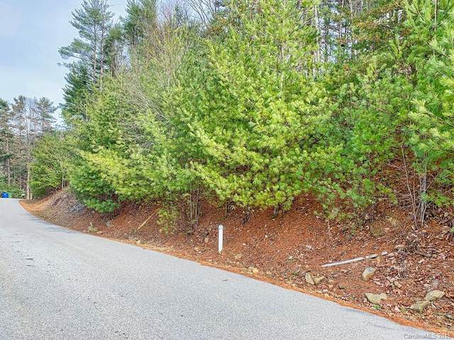 Lot 8 Stegall Lane, Asheville, NC 28805 (#3460195) :: Exit Realty Vistas
