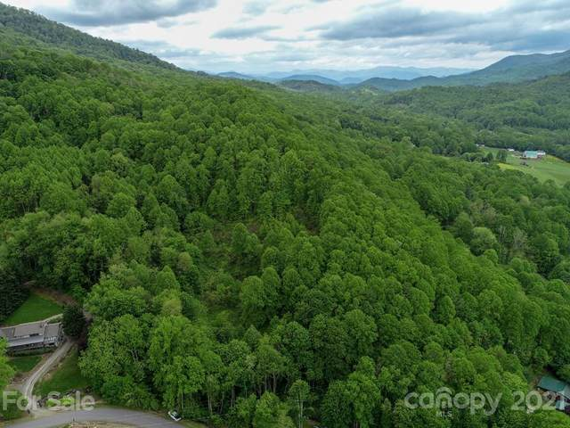 00 Red Bank Road, Waynesville, NC 28786 (#3467032) :: Cloninger Properties