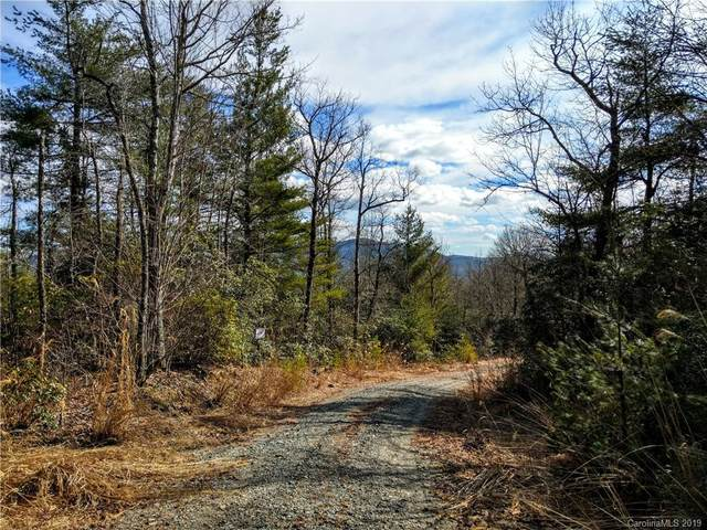 000 Emma Bri Lane F1, Hendersonville, NC 28739 (#3470158) :: Mossy Oak Properties Land and Luxury