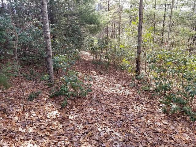 34 West View Road #34, Brevard, NC 28712 (#3473338) :: Stephen Cooley Real Estate Group