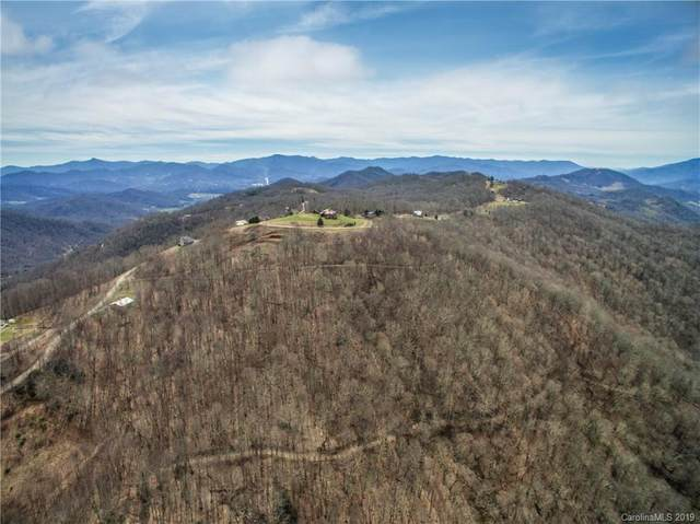 TBD Berry Patch Lane Lot's 15 & 16, Canton, NC 28716 (#3483971) :: Charlotte Home Experts