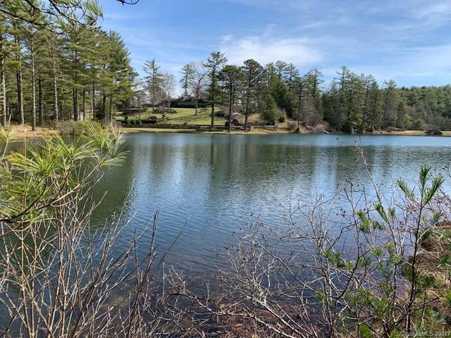 Lot 5 Stones Lake Road, Cedar Mountain, NC 28718 (#3491171) :: The Mitchell Team