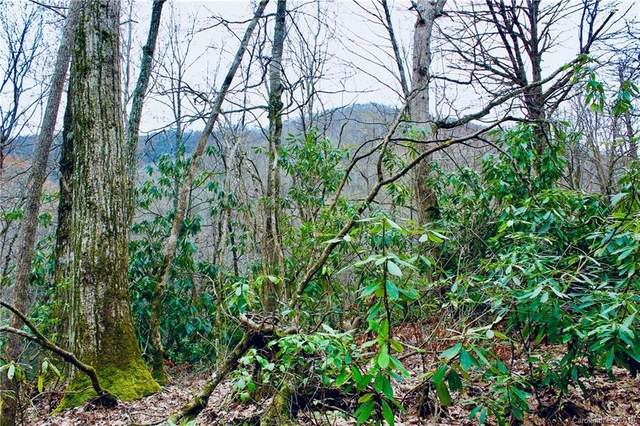 Lot #27 Huckleberry Drive, Maggie Valley, NC 28751 (#3496998) :: Charlotte Home Experts