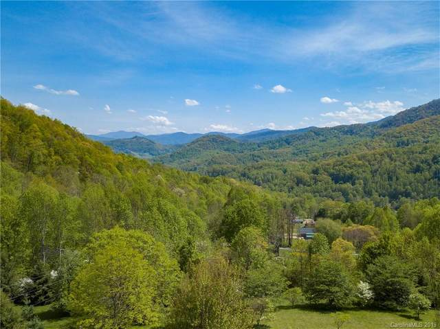 48 Pika Lane #17, Waynesville, NC 28785 (#3498361) :: Mossy Oak Properties Land and Luxury
