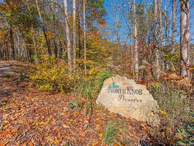 96 North Knob Lane #9, Weaverville, NC 28787 (#3504196) :: Mossy Oak Properties Land and Luxury