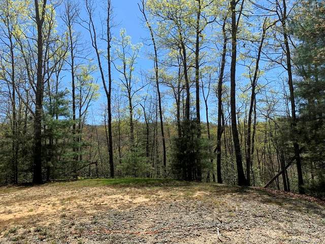 999 Cantrell Mountain Road 14/15, Brevard, NC 28712 (#3507838) :: Caulder Realty and Land Co.