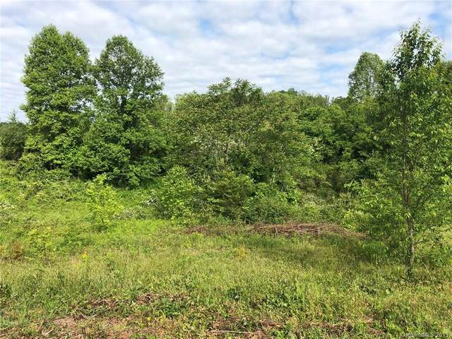 526 Summer Orchard Drive, Hendersonville, NC 28792 (#3508360) :: Mossy Oak Properties Land and Luxury